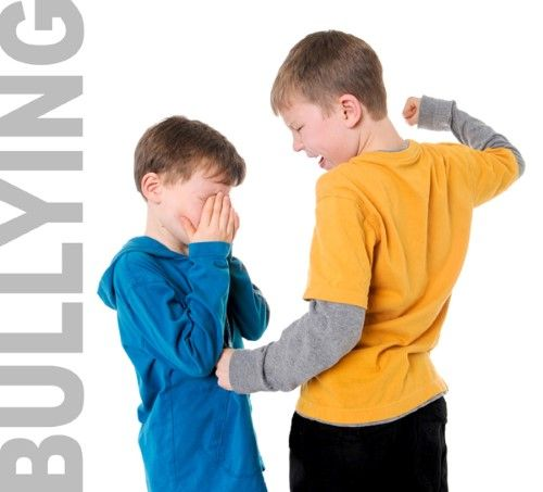 El acoso escolar ¿Cómo reconocemos a los protagonistas?