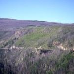Bike Myra Canyon on the amazing Kettle Valley Railway