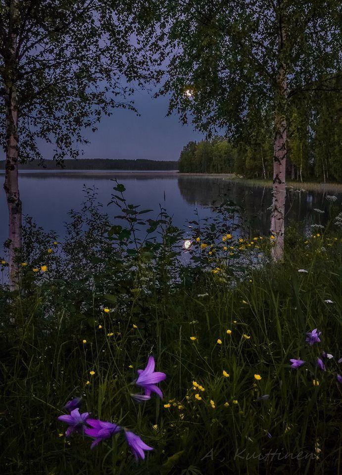 A . Kuittinen . Suomalainen maisema/Finnish landscape