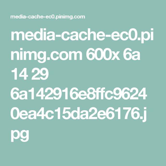 media-cache-ec0.pinimg.com 600x 6a 14 29 6a142916e8ffc96240ea4c15da2e6176.jpg