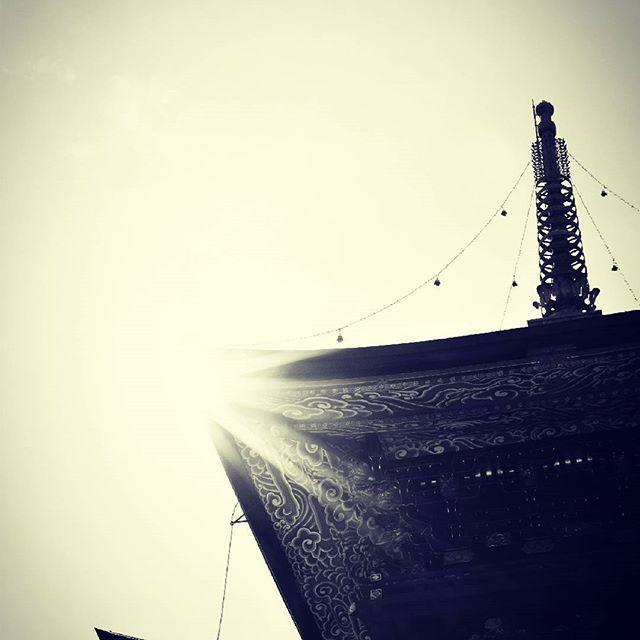 #成田山 #大日の光 #五重塔 #希望  大日の光、我等を照らす。分け隔てなく、普く平等に。生きとし生けるものすべてのために。強く、やさしく。合掌