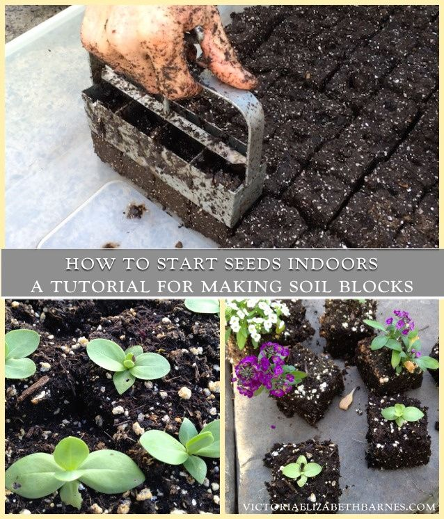 How to start seeds indoors – A video tutorial for making soil blocks. I've tried EVERY method, this is the BEST.