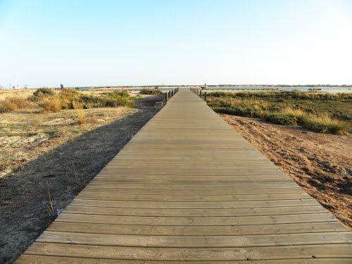 VAMOS Á PRAIA - Praia dos Tesos na Fuseta