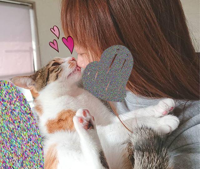 . 보고싶다~😔💭💭 . #愛猫#고양이#猫#ネコ#cat#cute#myfamily#家族#가족#love#iloveyou#좋아해#사랑해#귀여워#癒し#😺#🐾#癒しパワー#猫大好きなのに猫アレルギー悲しい#でもそんなの気にしない#imissyou