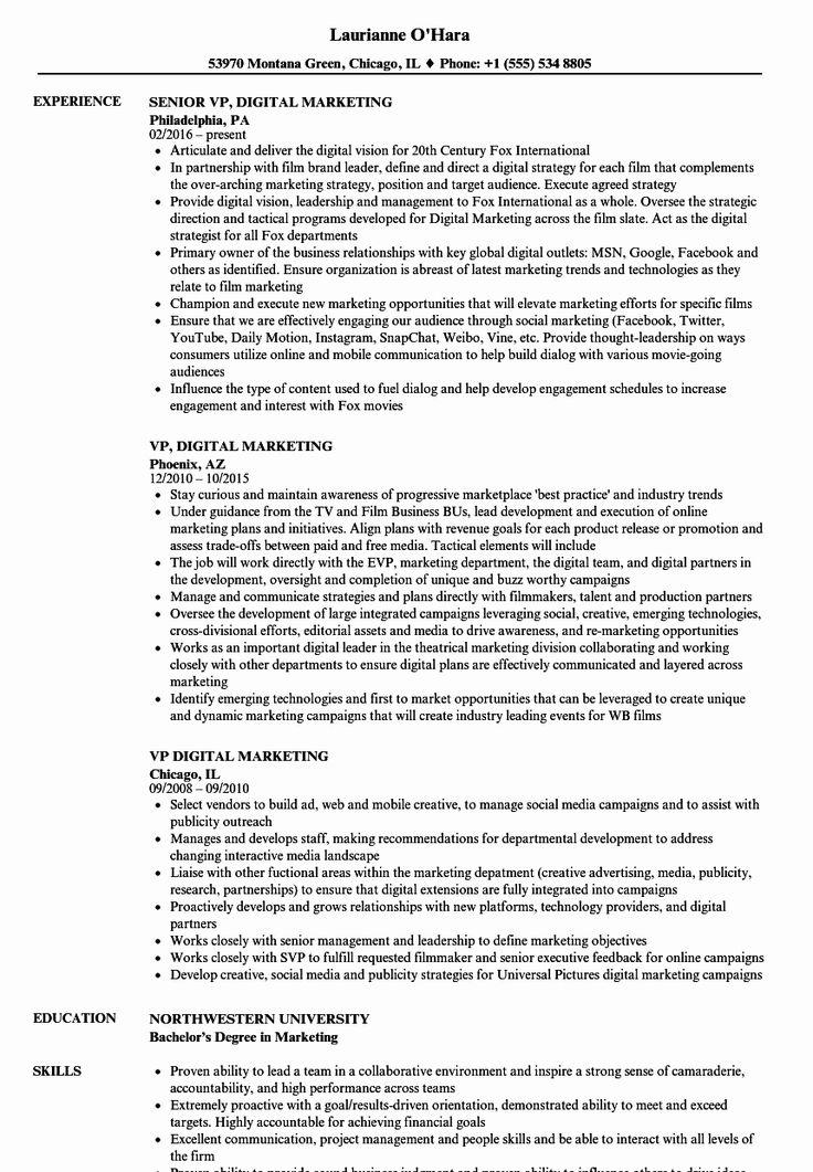 Digital marketing resume example beautiful vp digital
