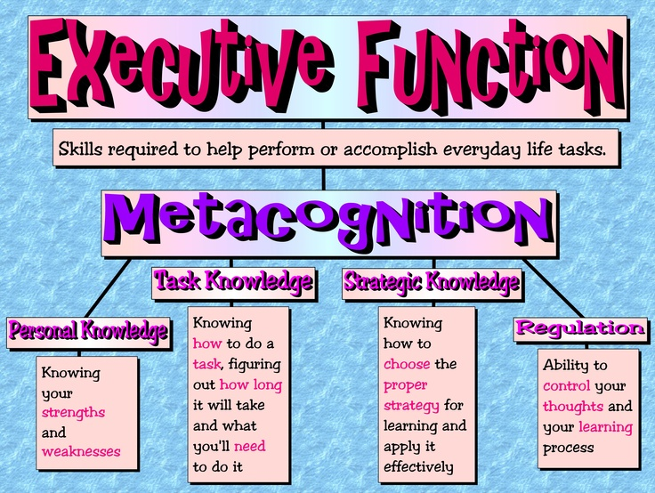 Executive Function - Skills required to perform or accomplish everyday life tasks (View only)