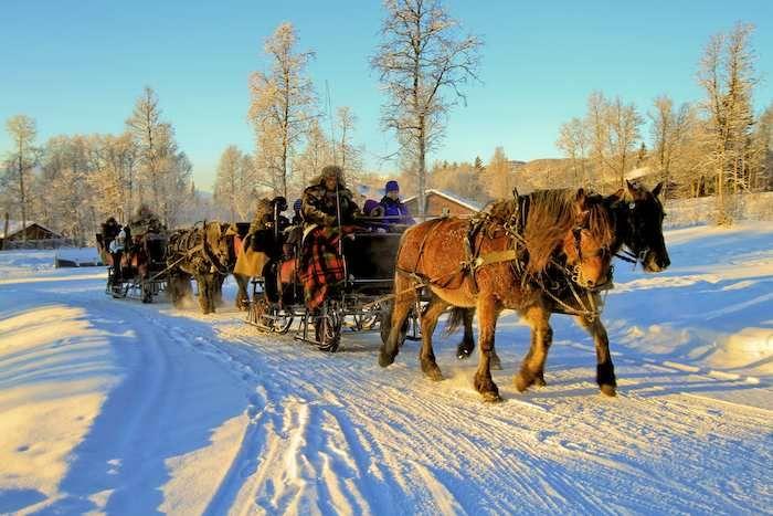 Take a horse drawn sleigh ride