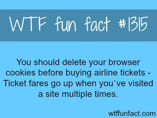 WTF Facts : funny & weird facts