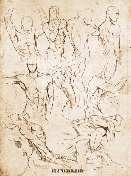Учебник. Мужское тело и его пропо..