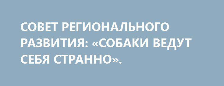 СОВЕТ РЕГИОНАЛЬНОГО РАЗВИТИЯ: «СОБАКИ ВЕДУТ СЕБЯ СТРАННО». http://rusdozor.ru/2017/03/21/sovet-regionalnogo-razvitiya-sobaki-vedut-sebya-stranno/  Украина после начала блокады «оккупированных территорий» сделала мощный экономический рывок. Более того, началось бурное процветание всего, рост ВВП, инфляция снизилась до десяти процентов, инвесторы дерутся за офисные помещения, рабочих мест с высокой зарплатой море, и уже рукой подать до всеобщего ...