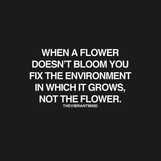 When a flower doesn't bloom, you fix the environment in which it grows, not the flower