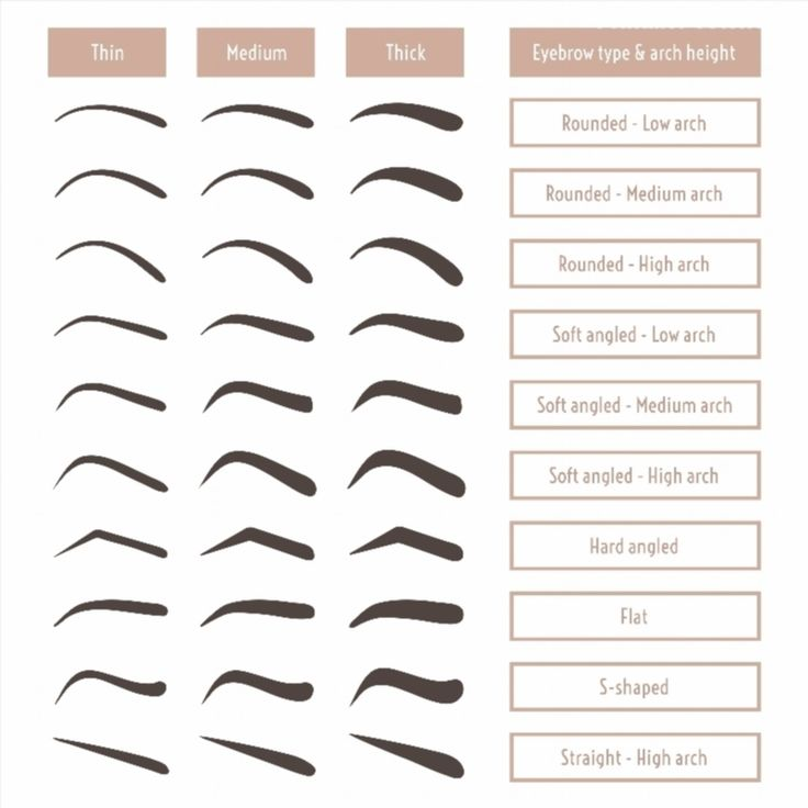 Eyebrow shapes. Various types of eyebrows. Classic type and other. Trimming. Vector illustration with different thickness of brows. Set with captions. Makeup tips. poster #poster, #printmeposter, #mousepad, #tshirt