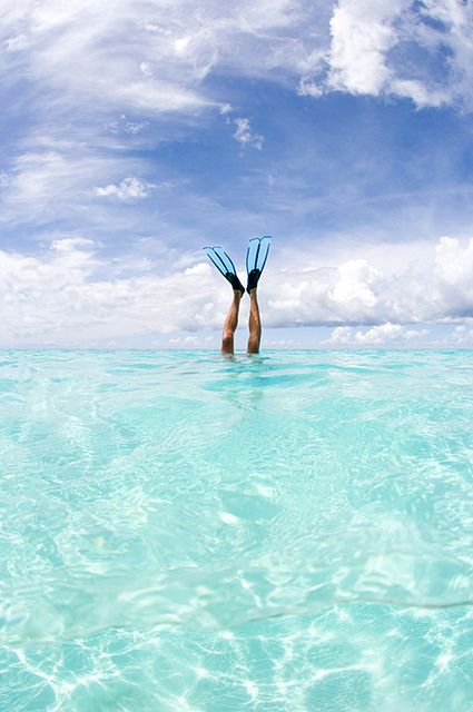 Ocean - snorkel -... I have never snorkeled before.... it's time....