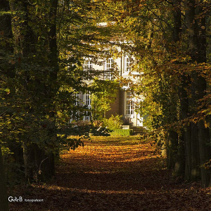 autumn view - #GdeBfotografeert