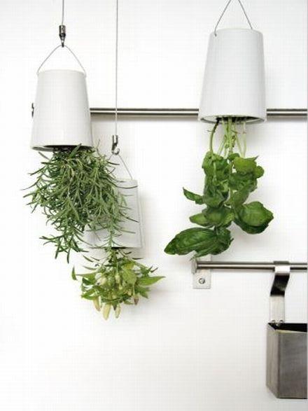 Nowy, innowatorski sposób na hodowanie ziół w kuchni :) #herbs #kuchnia #kitchen #pot #donica #dom #garden