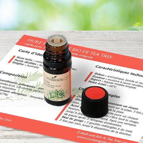 Comment utiliser l'huile essentielle de Tea Tree