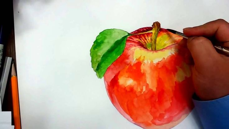 Apple watercolor painting drawing
