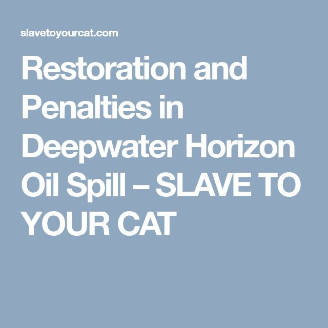 Restoration and Penalties in Deepwater Horizon Oil Spill – SLAVE TO YOUR CAT
