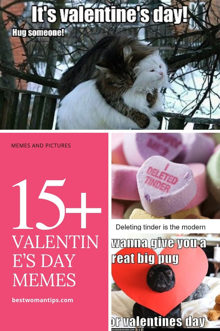 Cute And Lovely Valentine S Day Memes Best Woman Tips Funny Valentine Memes Memes Sarcastic Valentines Day Memes