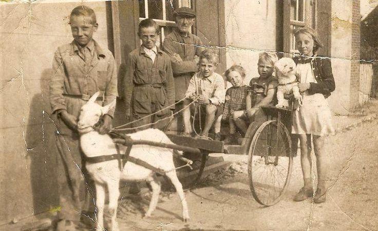 Kinderen met bokkenkar