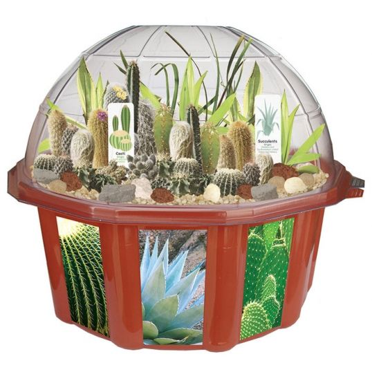 Osobisty Ogród Pustynny  #prezent #dlaniej #ogród #dom #kaktus
