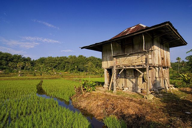 Farmer's hut, Lampung | Flickr - Photo Sharing!