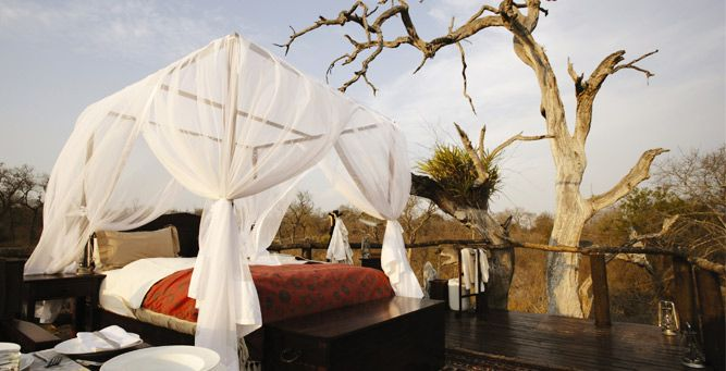Most Romantic Beds with a View - Chalkley Tree House at Lion Sands  #love #romance #valentinesday #africa #weloveafrica