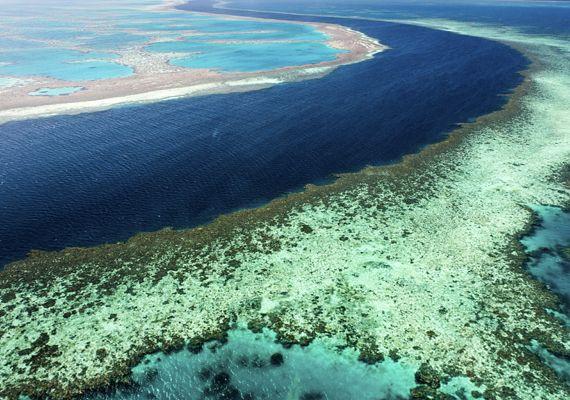 Nagy-korallzátony - Ausztrália | femina.hu