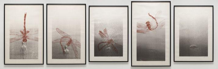 "Zhang Huan, Dragonfly, 2006, set of 5 silkscreens, 59-1/2"" x 41 1/2"" (151.3 cm x 105.4 cm), 2 silkscreens, each 64 1/2"" x 41 1/2"" (163.8 cm x 105.4 cm), 2 silkscreens, each 69 1/2"" x 41 1/2"" (176.5 cm x 105.4 cm), 1 silkscreen. Pace Gallery - ""Pace Chesa Büsin""."