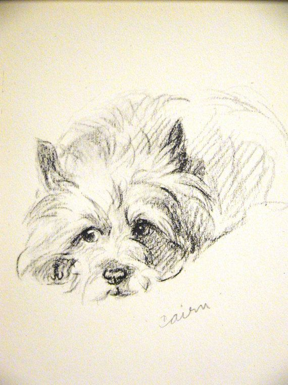 Lucy Dawson Print   1946  CAIRN TERRIER Very by AllThingsBrooklyn