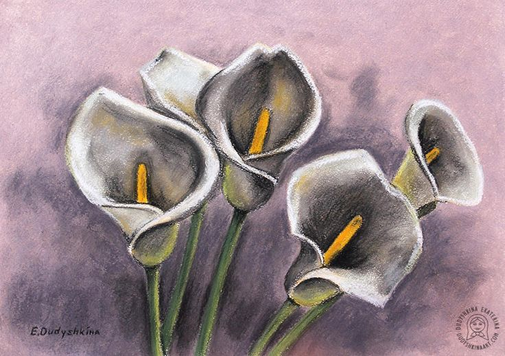 Пастельные каллы. Натюрморт. Calla lily. Watercolor art flowers. Botanical art pictures. Steel-life and flowers by Dudyshkina Ekaterina. Watercolor painting. Aquarelle colored splashes. Watercolour art work. Paints palette. My art tools – brushes, watercolor and oil paints, color palettes, ink. Art for home decor. Акварельные цветы. Ботанические рисунки акварелью, пастелью, маслом. Натюрморты и цветы художника Дудышкиной Екатерины. #dudyshkina ‬#workspace