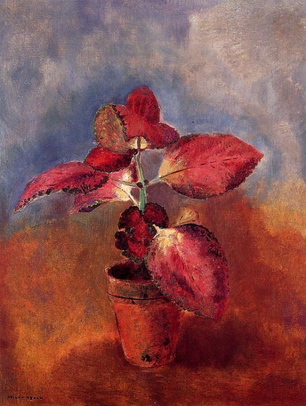 Odilon Redon ~ Begonia in a Pot, 1910