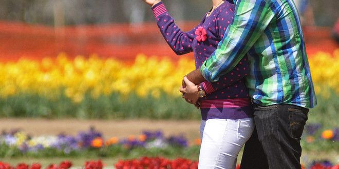 Kashmiri Tulips Attract Bollywood - Paradise Kashmir