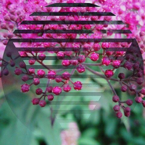 Love digital art? Follow => @artbyustoo #digitalart #acolorstory #fontcandy #instagood #photooftheday #picoftheday #art #reflection #photoart #splitpic #beautiful #prisma #photoartist #reflections #easytigerapps #vsco #drawing #nature #sketch #artist #pretty #beauty #clouds #ideas #artwork #illustration #instaart #photo #visualsoflife #color @easytigerapps @prisma  By @lisegottlieb
