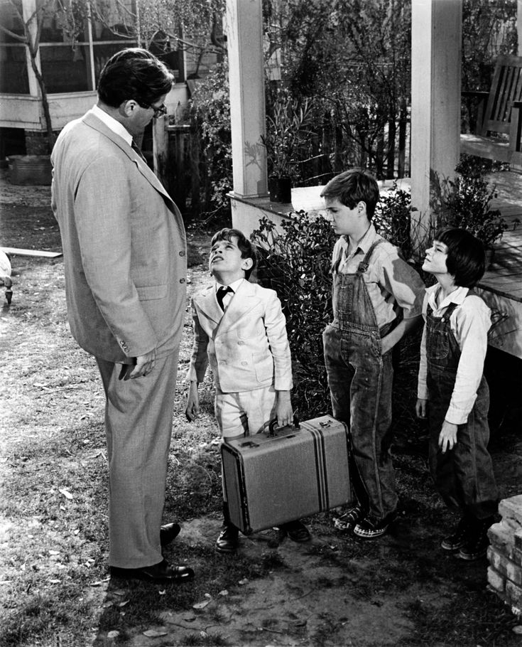 to kill a mockingbird curious jem finch Boekverslag engels to kill a mockingbird door harper lee  when jem and  scout met dill, he wanted to know everything about the radley's one of them,  the youngest son  they didn't listen because they were too curious when jem .