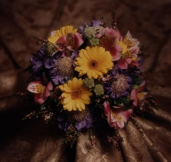 Assorted Spring mixed flowers/colors Photo by Judy Eliyas & Studio 925