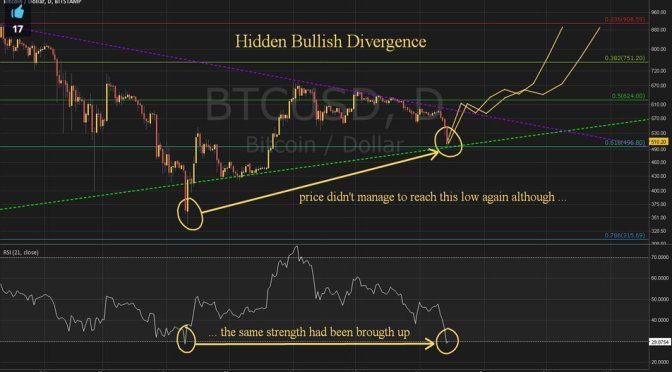 bitcoin price portfolio project hidden divergence