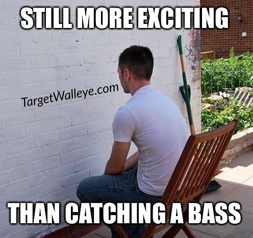 """(via targetwalleye.com): ...because someone has to bug those that chase """"green carp""""  _______________________________________ #TargetWalleye #WalleyeNuts #GravelLizard #walleye #fishing #bassfishing #greencarp _______________________________________  TargetWalleye.com is a 2X weekly smattering of what's hot in the Walleye and Ice fishing worlds delivered straight to your inbox. Sign up for the #FREE email at the link in our bio."""