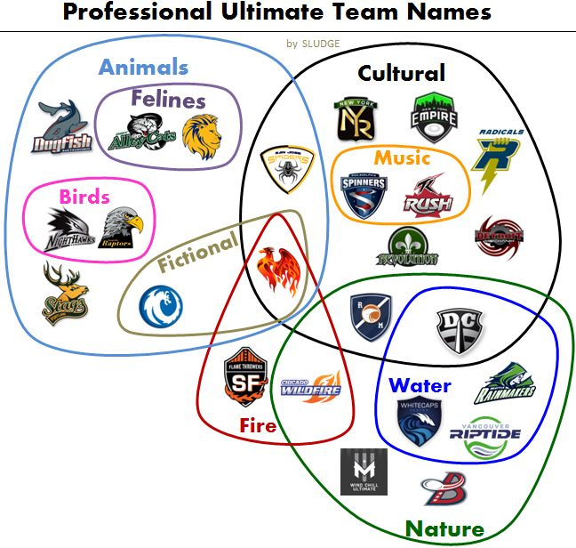 how to start an ultimate frisbee team