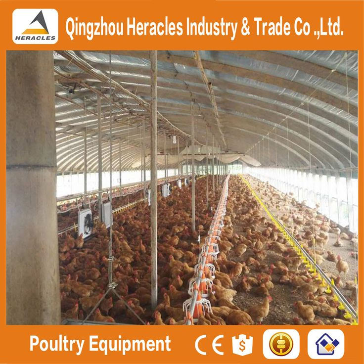 Chicken House Farm 14 best alibaba images on pinterest | poultry equipment, poultry