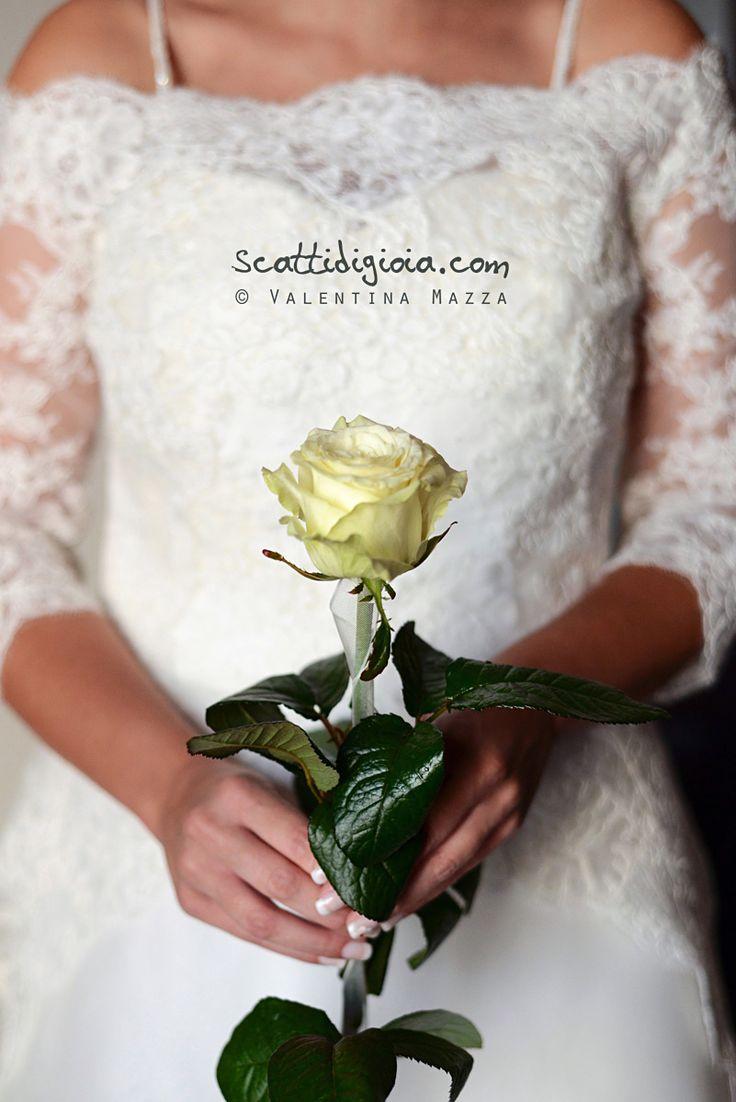 A unique rose for a unique love.  photo © www.scattidigioia.com