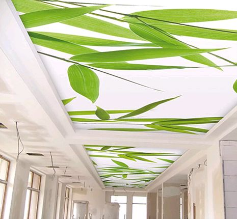 Specialty Ceiling Systems - INEX