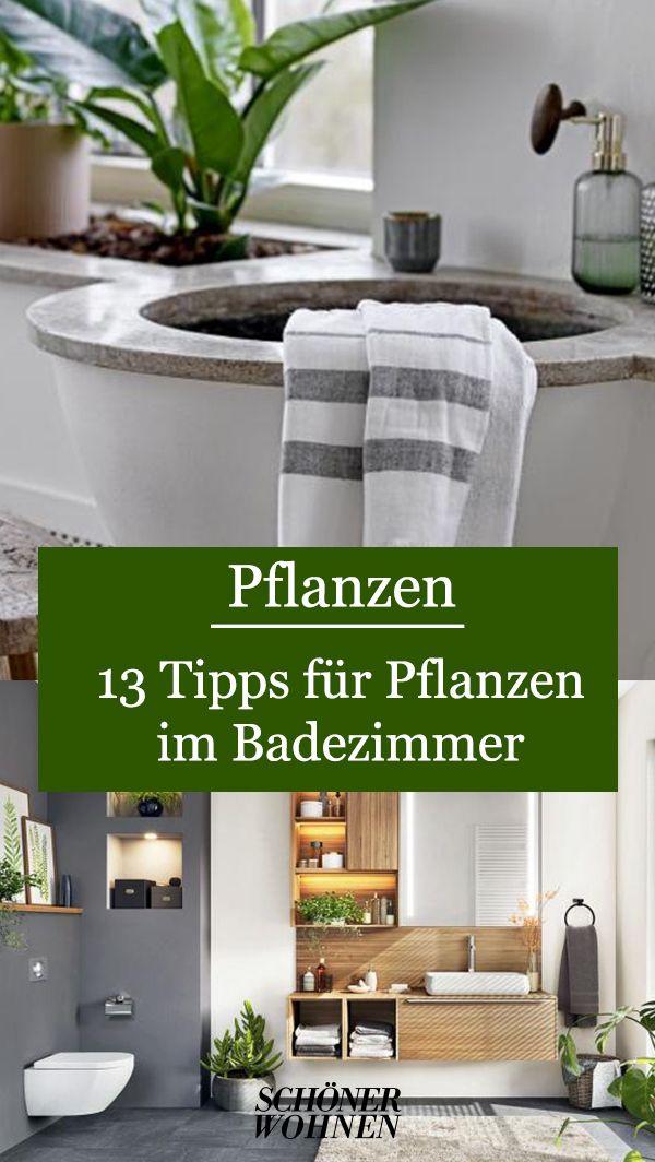 Banane Im Bad Bild 8 In 2020 Pflanzen Im Badezimmer Badezimmer Zimmer