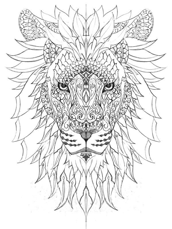 208 best Art images on Pinterest Adult coloring, Coloring books - fresh coloring pages lion head