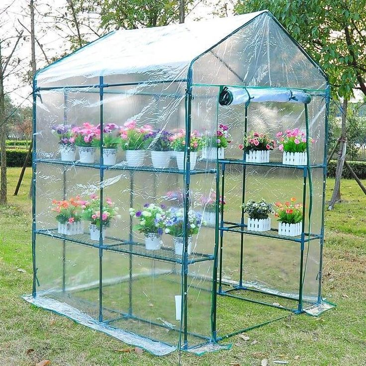 Portable Greenhouse 5' x 5' x 6' Walk In Garden Steeple Greenhouse Plant NEW #1