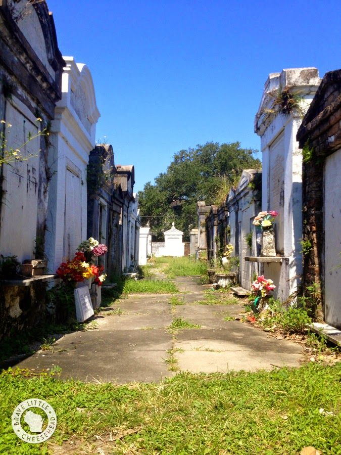 Top 6 Must-Do's in New Orleans | The Brave Little Cheesehead