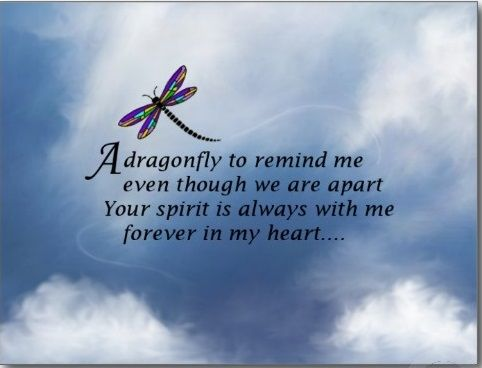 Dragonfly poem - you know who you are...:(