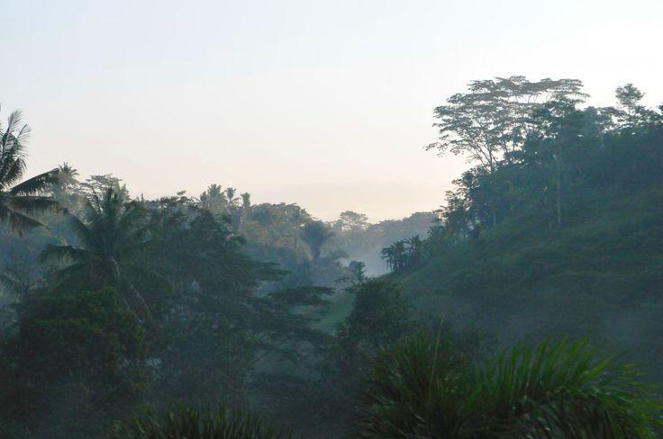 Villa Umah Shanti | 3 bedrooms | Ubud, Bali #forest #villa #bali