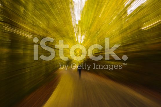 Abstract Blurry Yellow Fall Forest - Look Like Time Travel royalty-free stock photo