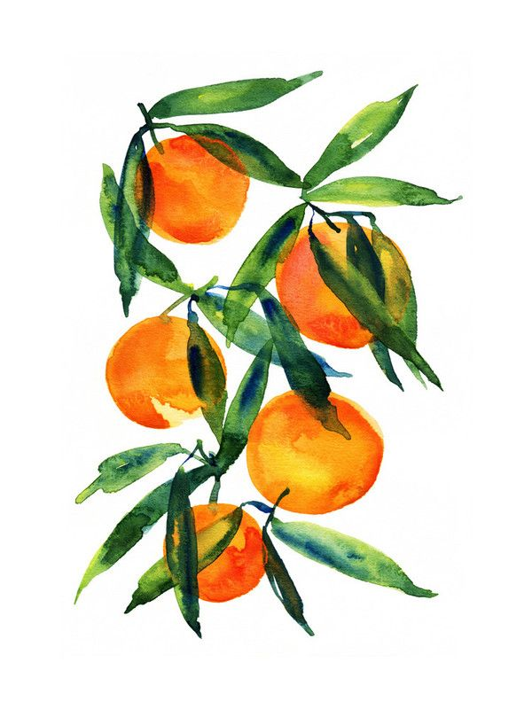 """Tangerine"" - Art Print by Alexandra Dzh in beautiful frame options and a variety of sizes."
